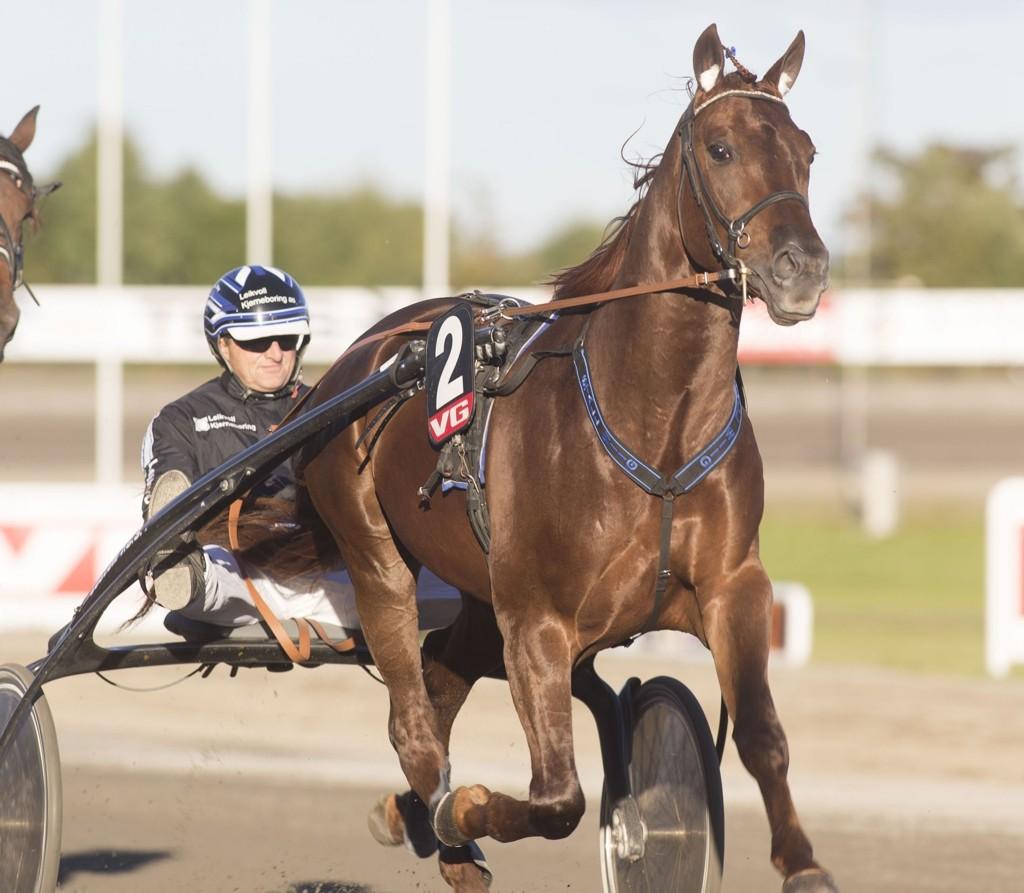 Jag Photo, og Rune Wiig har en bra sjanse på tirsdag. foto_Roger Svalsr¿d_hesteguiden.com