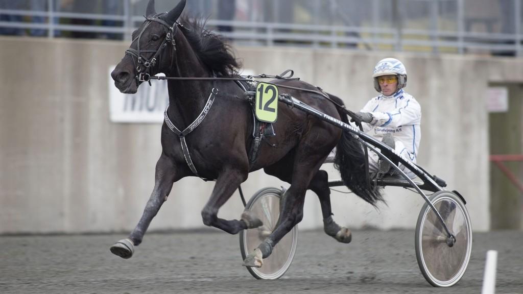 Flemming Jensen har flere bra sjanser i lunsjen på Åby. foto_Roger Svalsr¿d_hesteguiden.com
