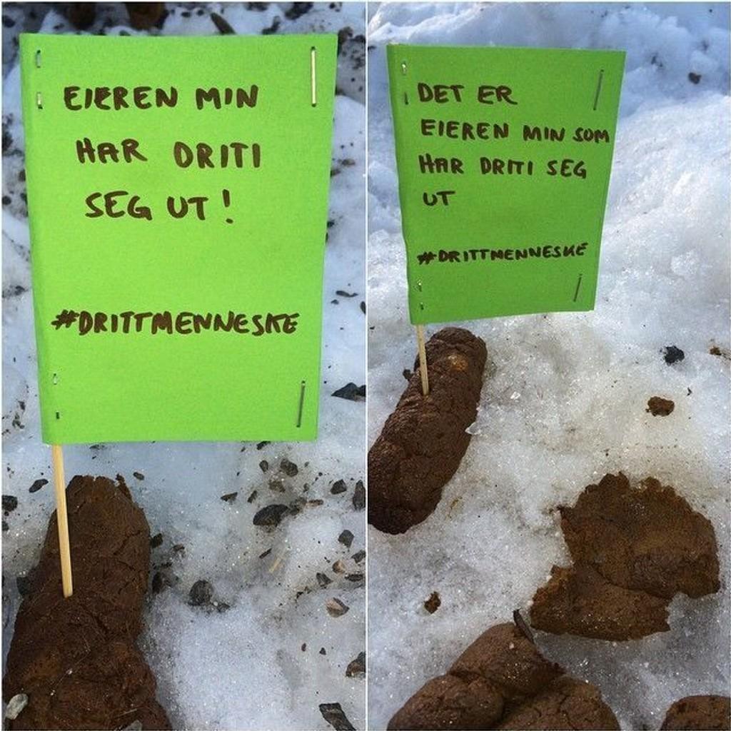 #drittmenneske-kampanjen brer nå om seg i sosiale medier. Fredrik Milde, som står bak de grønne plakatene, håper hundeeiere nå tenker seg om to ganger før de lar bikkja gjøre fra seg uten at de plukker opp.