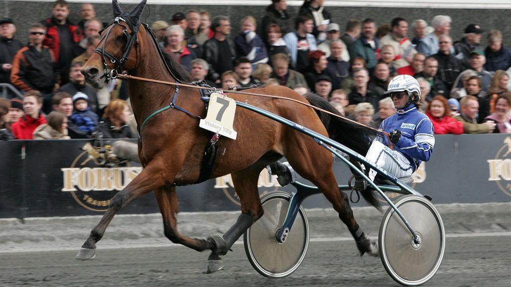 Erik Adielsson sitter seg opp bak en kapabel hest i lunsjen lørdag.
