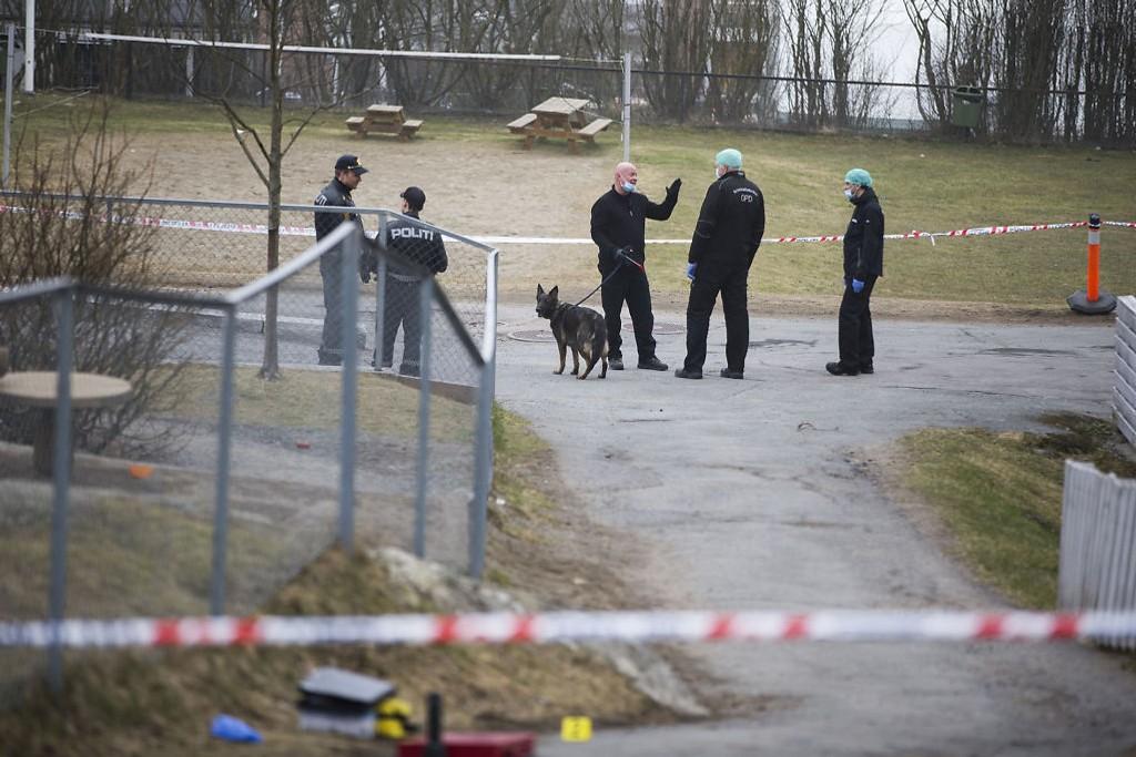 Kriminalteknikere med hund undersøker området der det ble funnet våpen etter at en mann ble funnet drept natt til lørdag ved Lindeberg skole i Oslo.