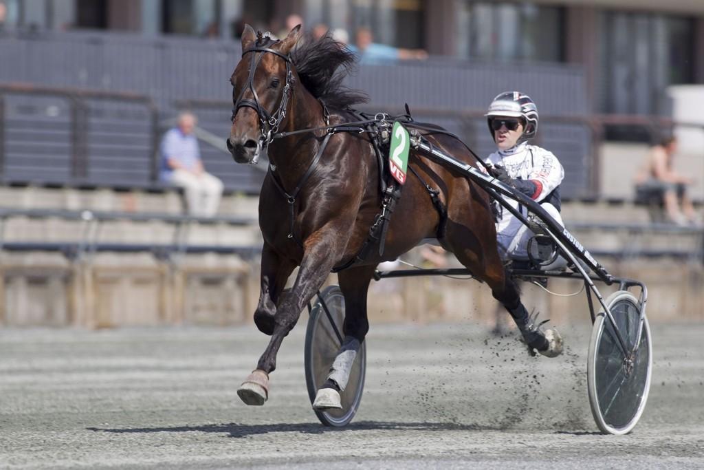 Mr. Renati B.R. har et interessant løp foran seg torsdag.Foto Roger Svalsrød hesteguiden.com
