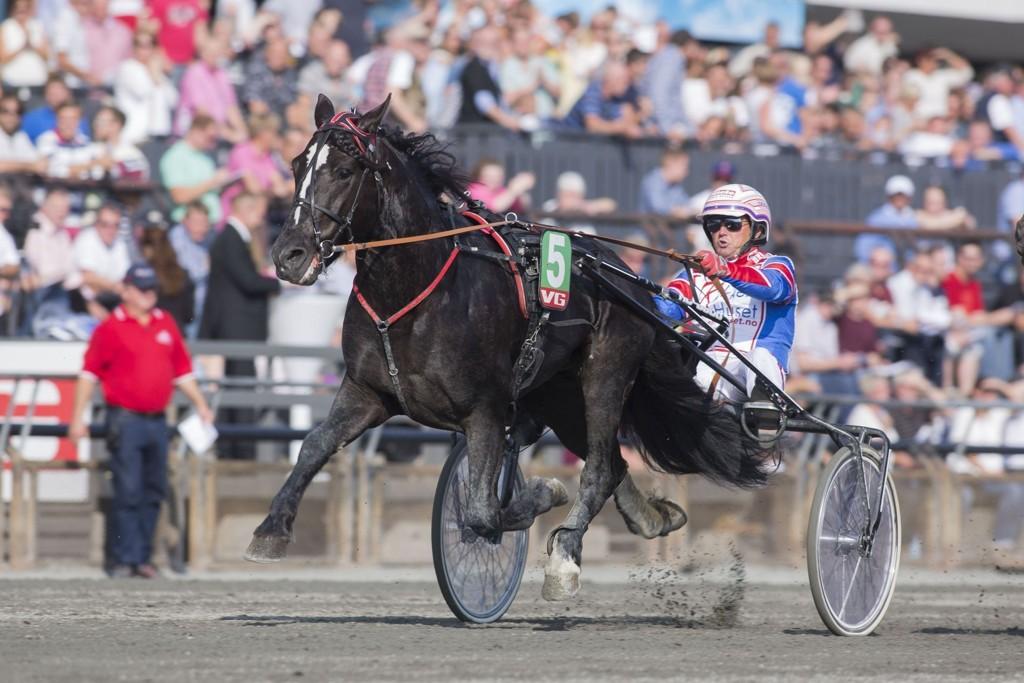 Per Oleg Midtfjeld kjører en av våre store luringer denne mandagen. foto_Roger Svalsr¿d_hesteguiden.com