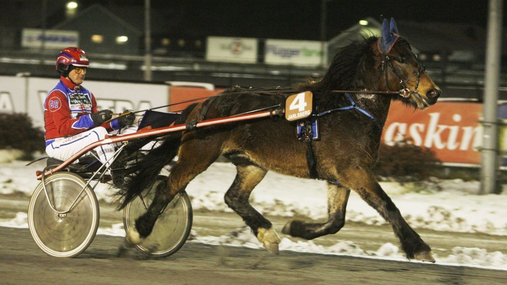 Føynland Jerven, her fra sin ungdom, er ustoppelig, og jakter sin tolvte strake seier. Foto: Anders Kongsrud/www.hesteguiden.com.