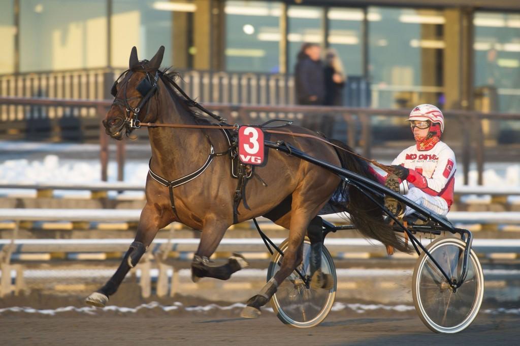 Sidsel blir mye spilt i V65-2. foto_Roger Svalsr¿d_hesteguiden.com