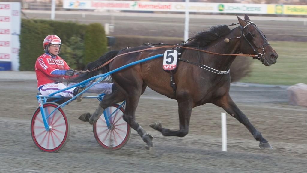 Yankee Va Bene og Åsbjørn Tengsareid blir stor favoritt i V5-1A på Klosterskogen torsdag.Foto: Anders Kongsrud/www.hesteguiden.com.