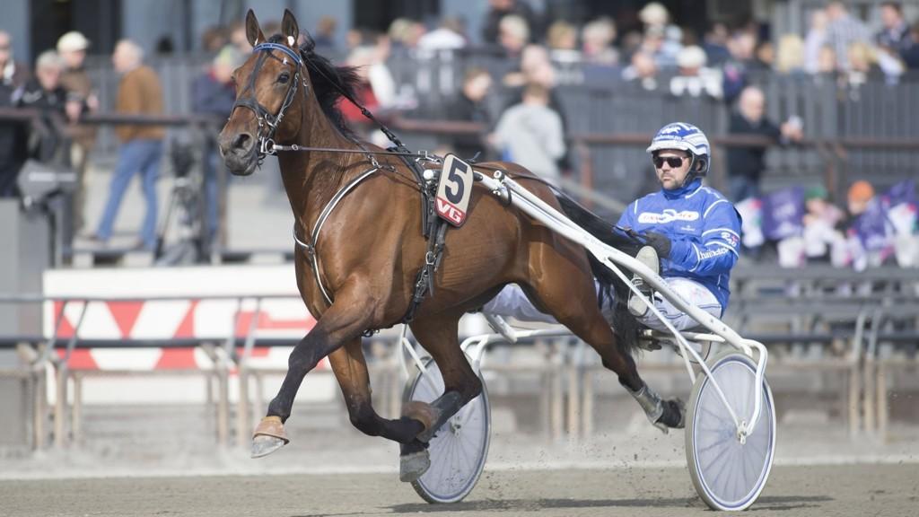 Bo Westergaard får tillit som bankerkusk denne søndagen. foto_Roger Svalsr¿d_hesteguiden.com