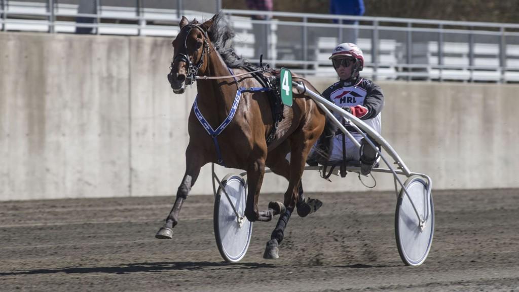 Fireårshoppa This Is It bankerspilles i V5-spillet på Biri lørdag sammen med Eirik Høitomt.foto Roger Svalsrød hesteguiden.com