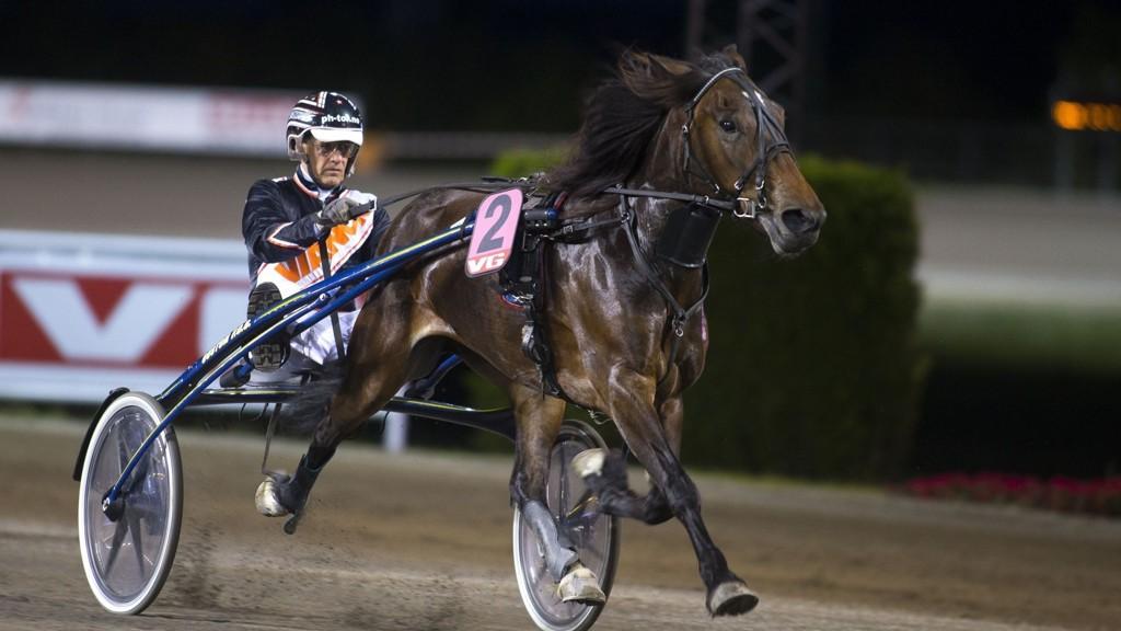 Lannem Silje skal ha en blåser i kroppen før Solvalla neste søndag, og blir hardt betrodd i dagens V64-spill. foto_Roger Svalsr¿d_hesteguiden.com
