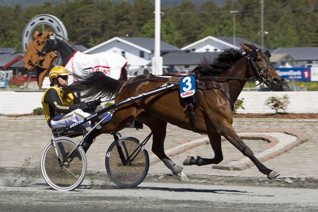 Grand Sandy og Jørn Bjaanes møter på riktig motstand tirsdag. Foto: Morten Skifjeld/Hesteguiden.com
