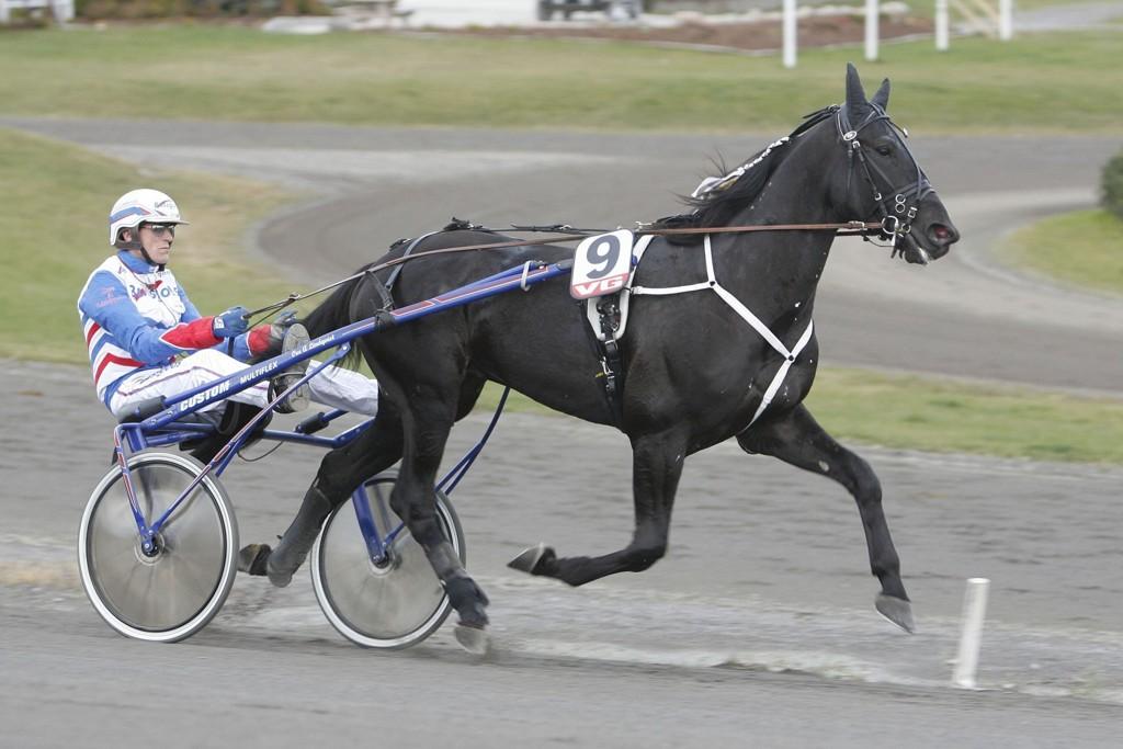 Ove A Lindqvist kjører vår frekke DD-banker på Hagmyren denne torsdagen. Foto: Anders Kongsrud/www.hesteguiden.com.