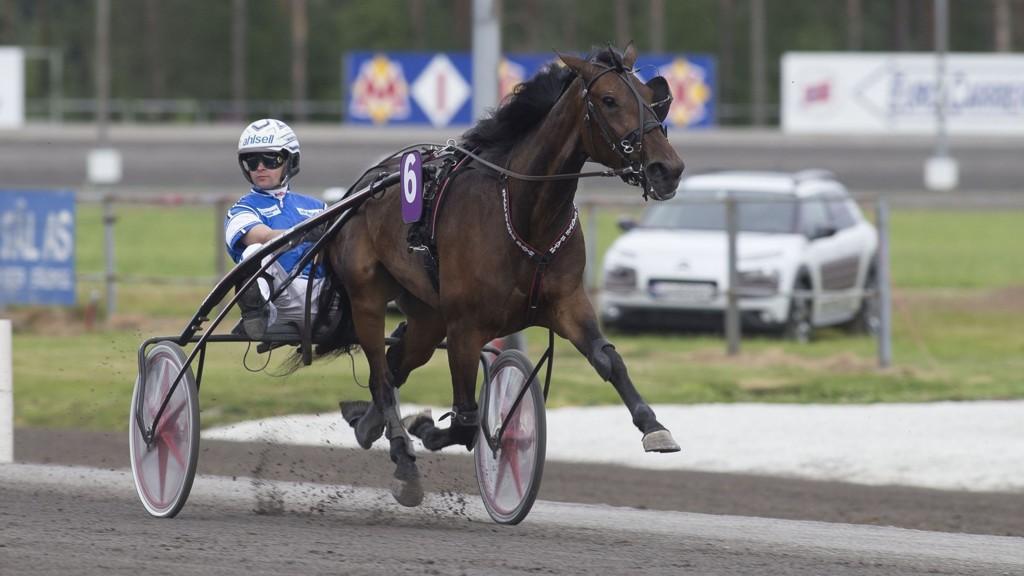 Erik Adielsson kusker vår V65-banker på Solvalla fredag. foto Roger Svalsrød hesteguiden.com