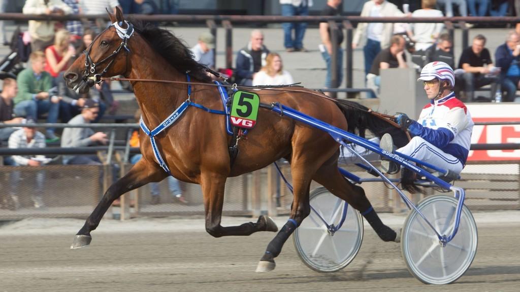 Rafolo er en outsider i V4-3 på Bjerke søndag.Foto: Anders Kongsrud/www.hesteguiden.com.