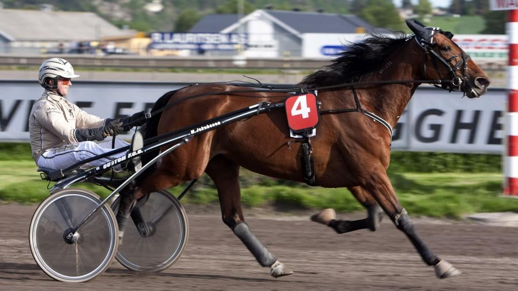 Magnus Jakobsson kjører vår banker denne mandagen. Foto Morten Skifjeld/Hesteguiden.com