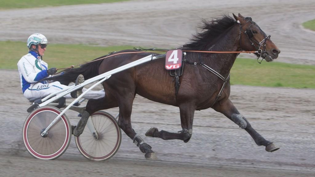 Hans Christian Holm kjører vår banker denne søndagen. Foto: Anders Kongsrud/www.hesteguiden.com.