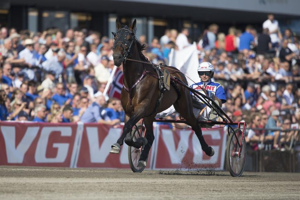 Jorma Kontio kusker dagens tyngste V4-favoritt i Eskilstuna. Foto. Roger Svalsrød hesteguiden.com