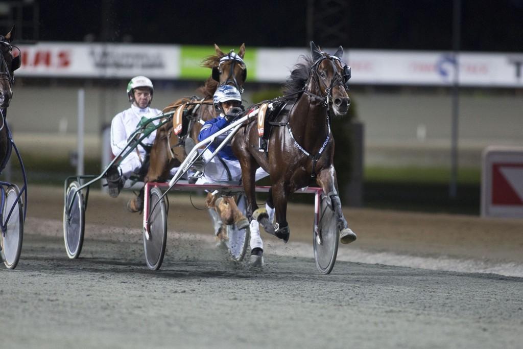 Svein Ove Wassberg kjører en av våre luringer på torsdag. foto_Roger Svalsr¿d_hesteguiden.com