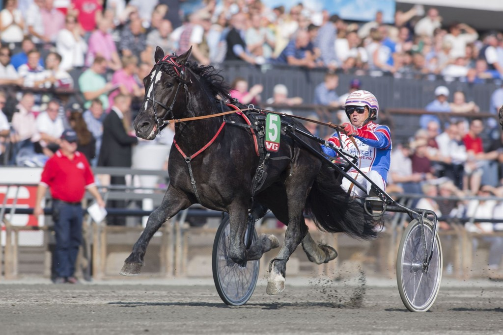 Per Oleg Midtfjeld kusker en av dagens tyngste favoritter på Momarken. foto Roger Svalsrød hesteguiden.com