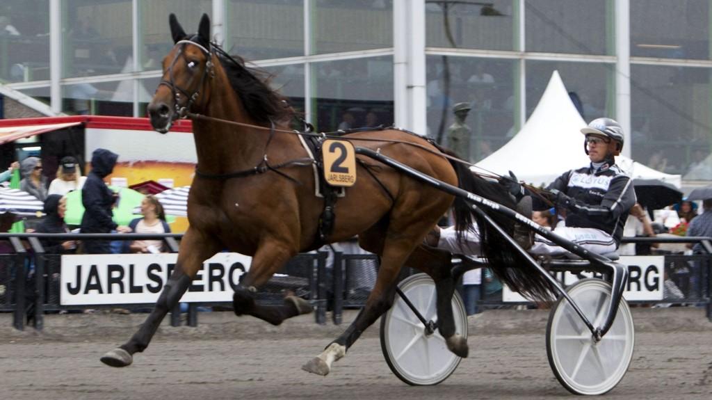 Robert Bergh kjører vår V4-banker denne mandagen. Foto Morten Skifjeld/Hesteguiden.com