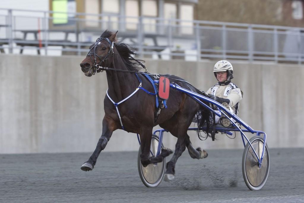 Magnus Jakobsson dukker opp med en spennende traver i V5-finalen. Foto. Roger Svalsrød hesteguiden.com