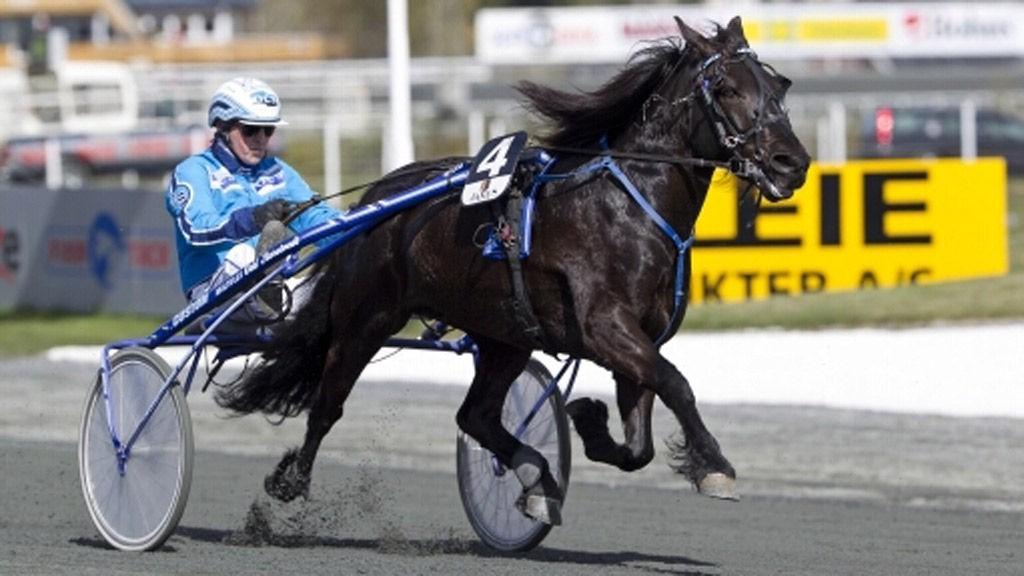 Odd Storetvedt kommer ut med en meget spennende hest i B-spillet på Bergen travpark torsdag.