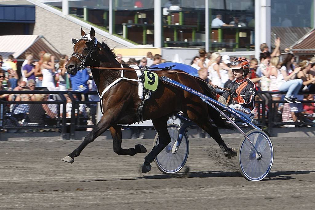 Dag-Sveinung Dalen kjører vår banker denne tirsdagen. Foto: Anders Kongsrud/www.hesteguiden.com.