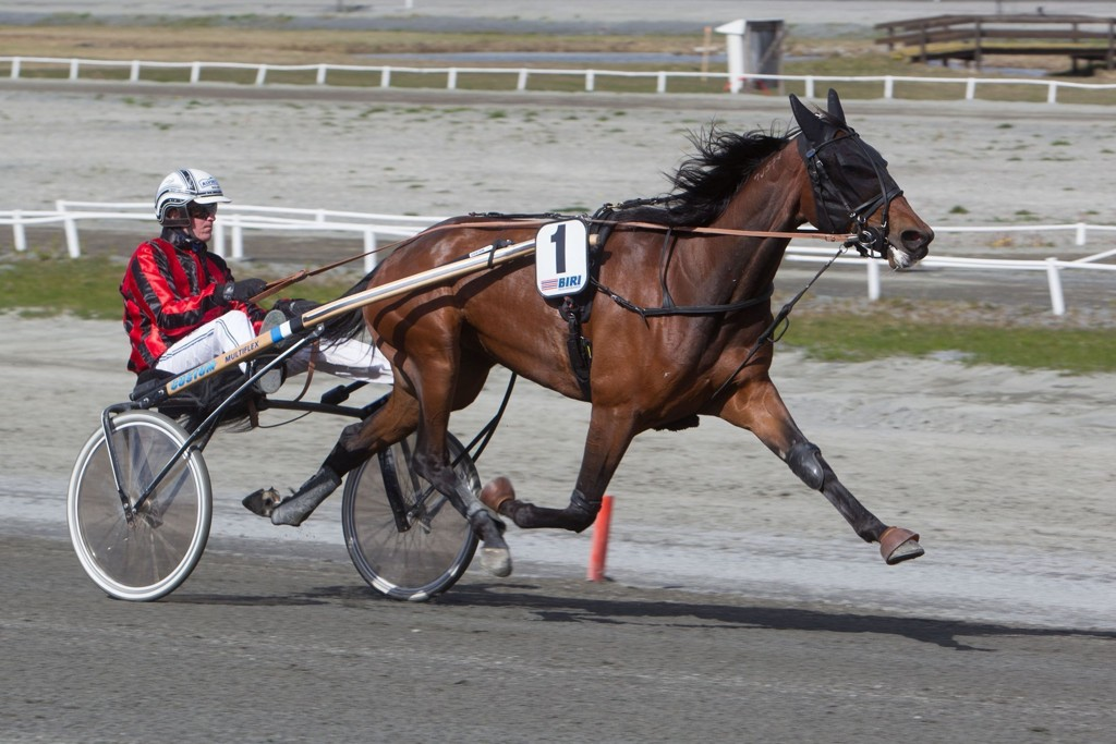 Christoffer Eriksson kjører vår jackpotbanker fra Jägersro. Foto: Anders Kongsrud/www.hesteguiden.com