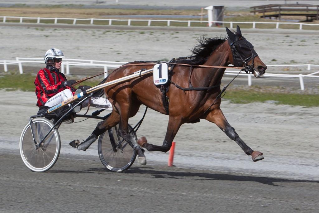 Christoffer Eriksson kjører en av dagens mest betrodde hester. Foto: Anders Kongsrud/www.hesteguiden.com