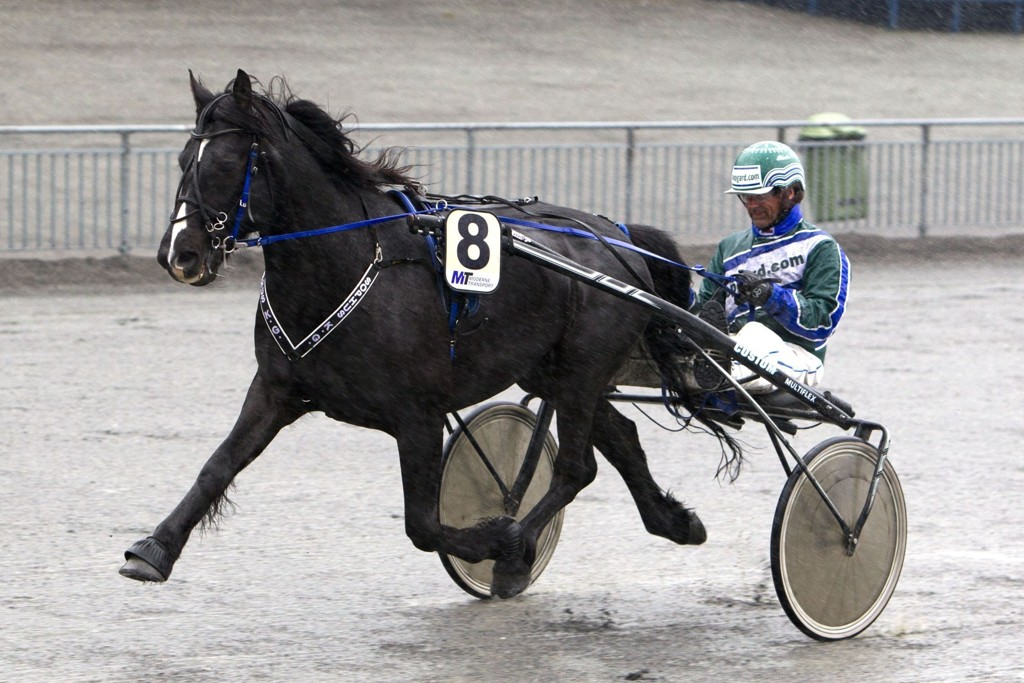 Roar Hop har noen fine sjanser denne torsdagen. Foto Morten Skifjeld/Hesteguiden.com