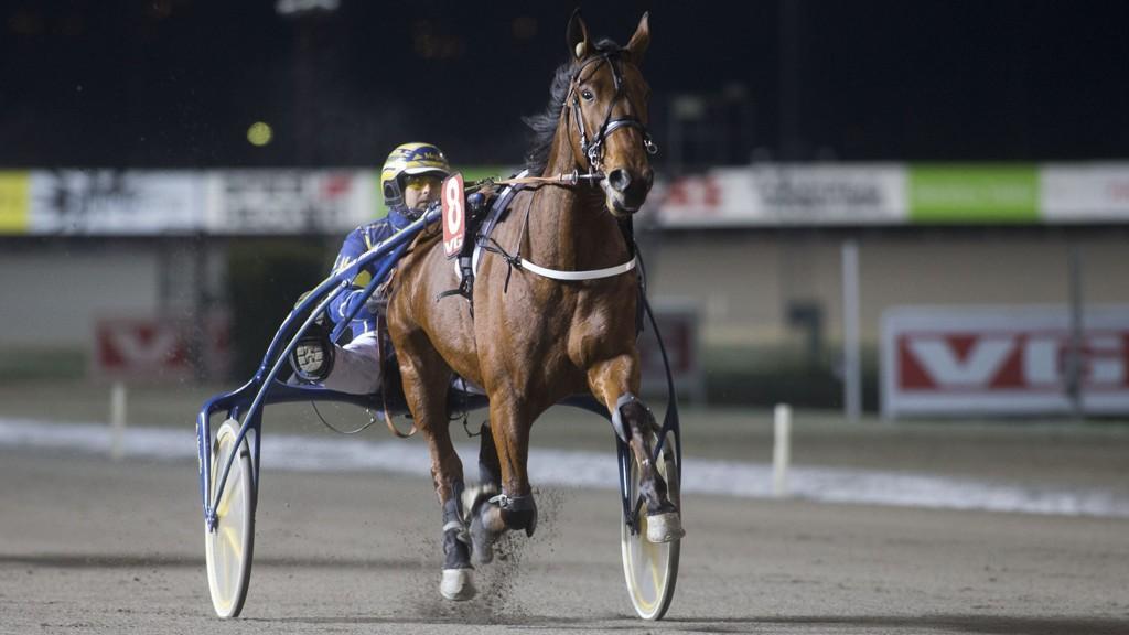 Kristian Malmin kjører vår frekke V65-banker denne søndagen. foto_Roger Svalsr¿d_hesteguiden.com