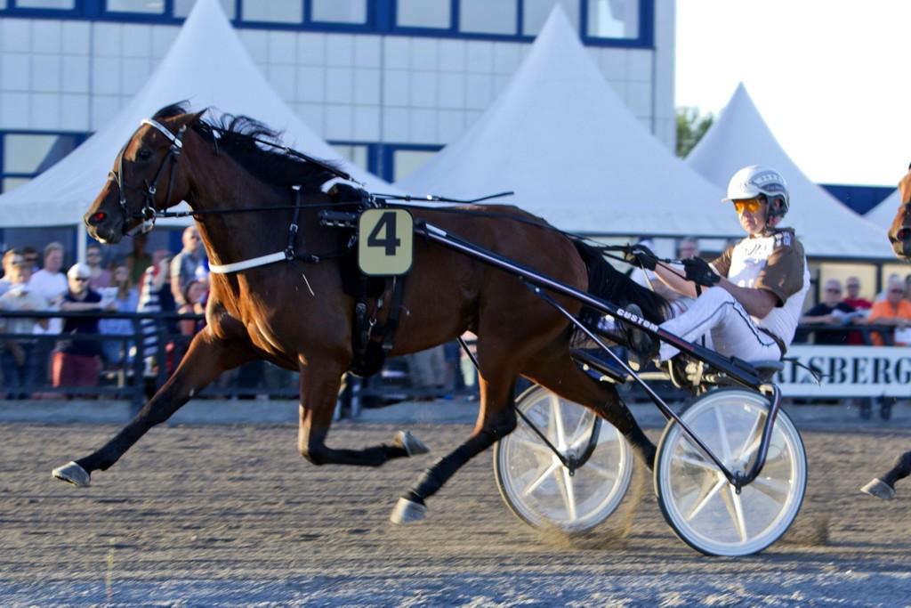 Valla d'Estino, og Eirik Høitomt blir mange sin favoritt på fredag. _FotoMorten Skifjeld_Hesteguiden.com