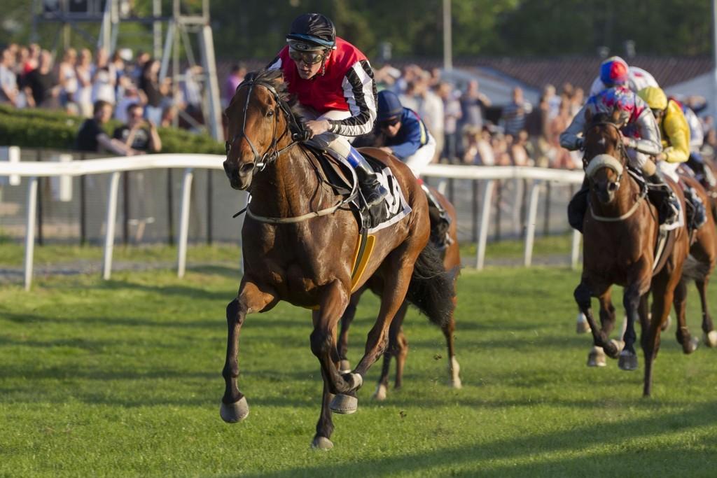 Oliver Wilson er rytter på vår banker denne torsdagen. foto_Roger Svalsr¿d_hesteguiden.com