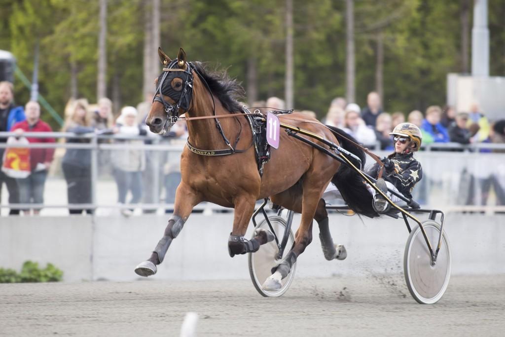 Maja Kanstad, og Image Va Bene har et spennende løp foran seg i dag. _foto_Roger Svalsr¿d_hesteguiden.com