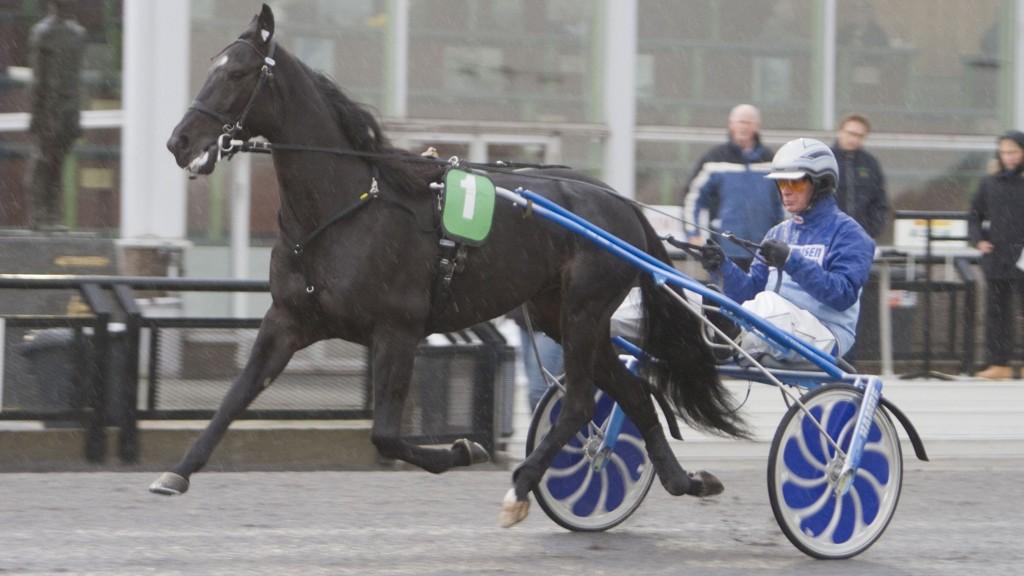Winmecredit og kusk Frode Hamre er en av dagens største favoritter. Foto: Anders Kongsrud/www.hesteguiden.com