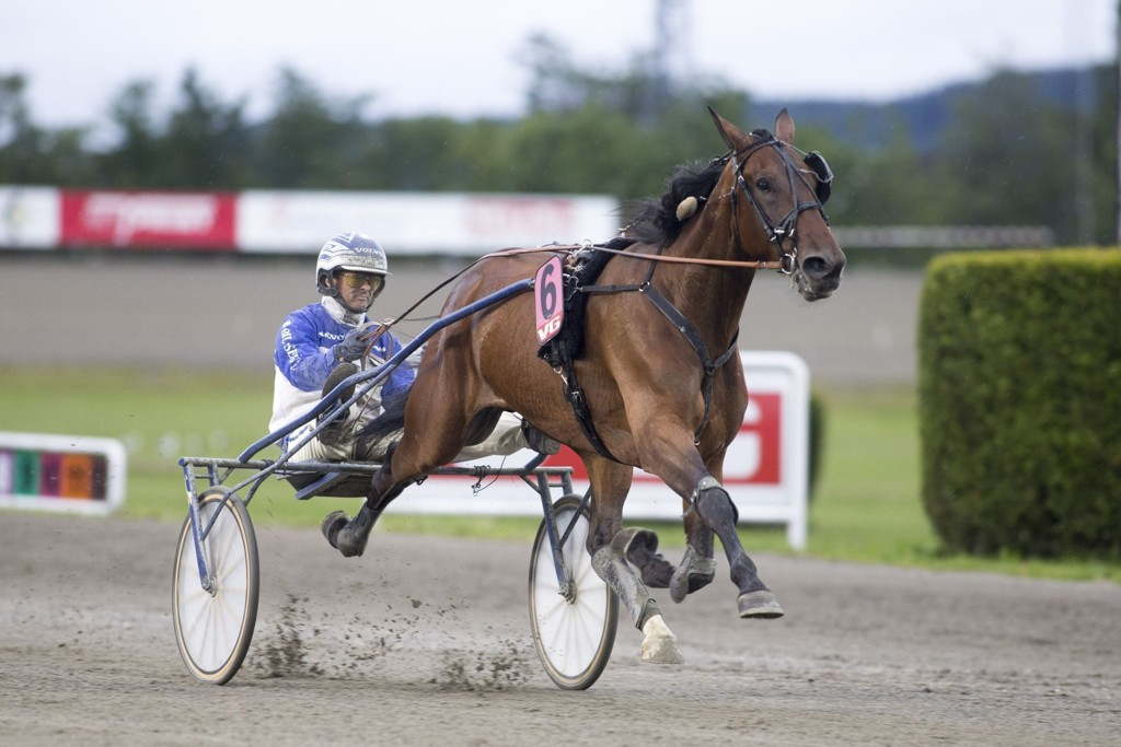 Royal Ice, og Vidar Hop får mye spill på seg i finalen.foto_Roger Svalsr¿d_hesteguiden.com