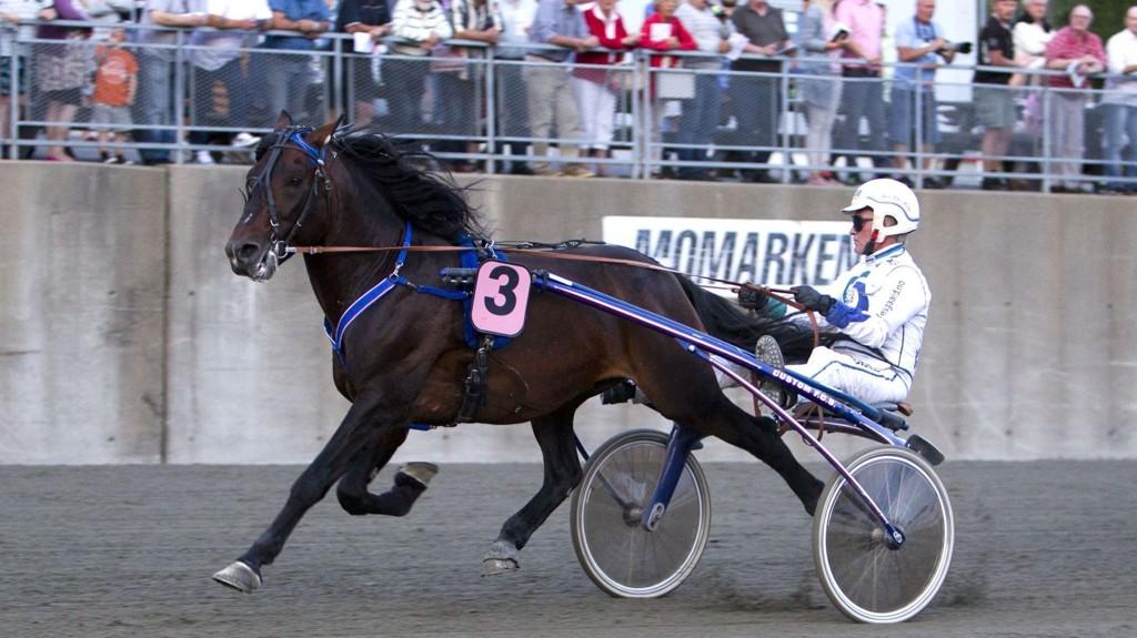 Jærvsø Ole og Hans Christian Holm blir store favoritter i V75-1 i Drammen lørdag. Foto Morten Skifjeld/Hesteguiden.com