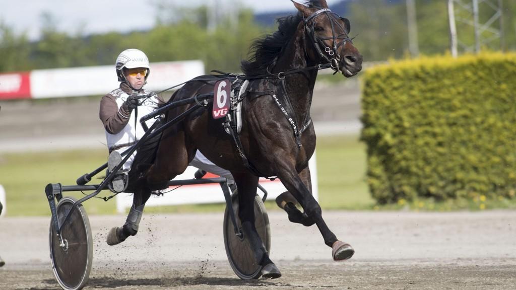 Double Spin har imponert i to strake seiersløp for Eirik Høitomt. Foto Roger Svalsrød hesteguiden.com