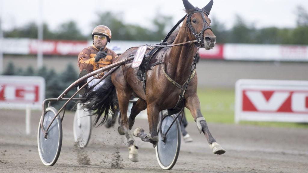 Heartbreaker V.S. og Bjørn Steinseth jakter ny seier på Biri fredag. Foto Roger Svalsrød hesteguiden.com