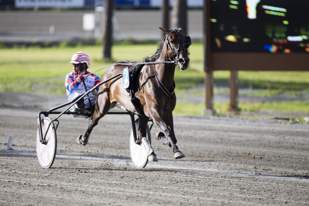 Per Oleg Midtfjeld, og Patricia Hastrup blir en av dagens tyngste V75-favoritter. _foto_Roger Svasr¿d_hesteguiden.com