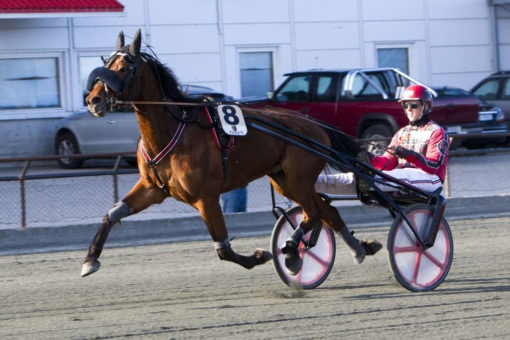Kenneth Handeland kjører vår banker på Sørlandet søndag. Foto Morten Skifjeld/Hestehguiden.com