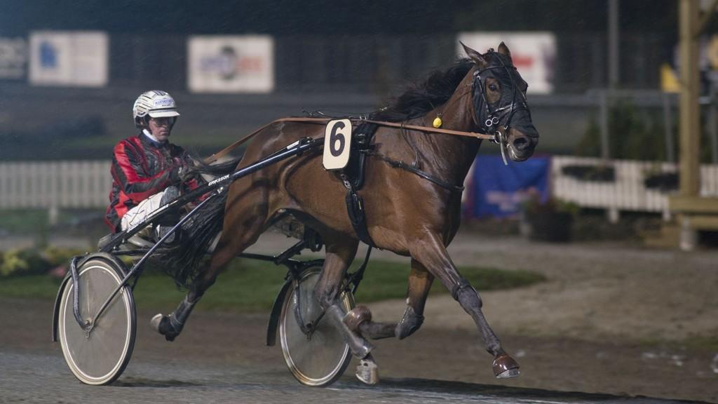 Christoffer Eriksson kjører vår smellfrekke banker på fredag. foto_Roger Svalsr¿d_hesteguiden.com