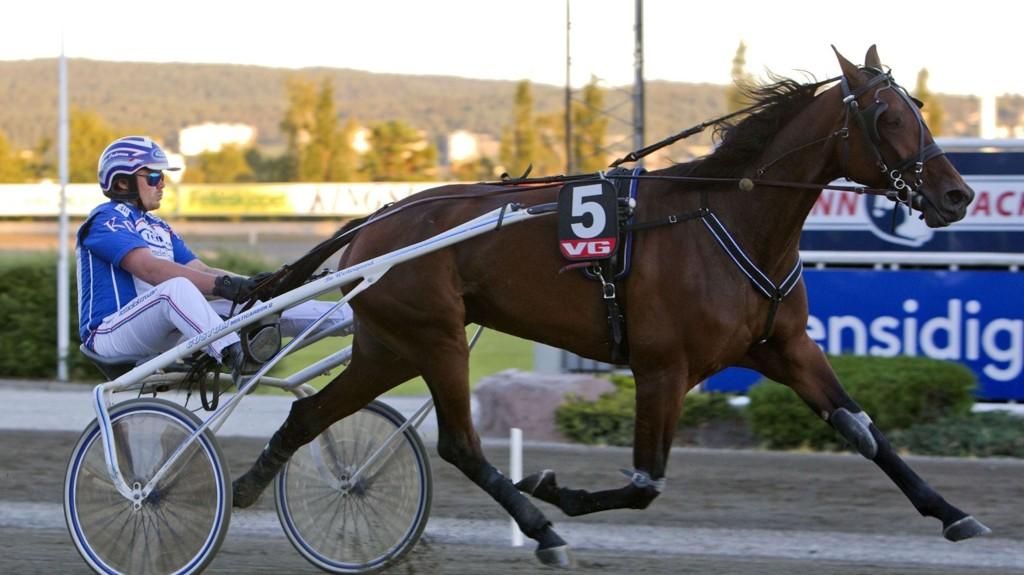 Tooltime og Kim Pedersen har en meget fin vinnersjanse i V76-5 på Bjerke onsdag. Foto Morten Skifjeld/Hesteguiden.com