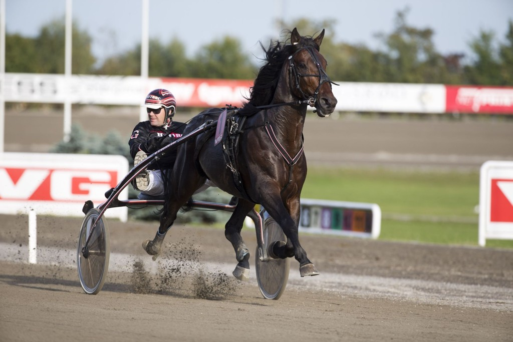 Geir Vegard Gundersen og Kappa Alpha gjør en spennende start i V5-5. Foto Roger Svalsrød hesteguiden.com