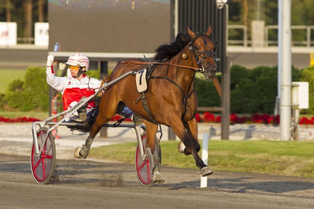 Pål Buer, og Pasha har en spennende oppgave foran seg på tirsdag. _foto_Roger Svalsr¿d_hesteguiden.com