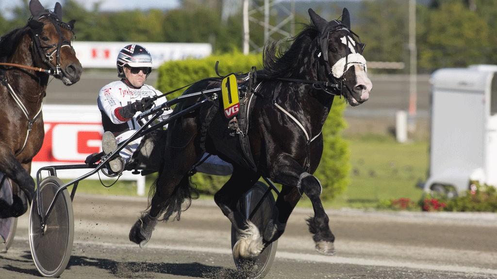 Myr Faksen (Her med Kai Johansen), og HC Holm blir mange sin banker i Harstad søndag.