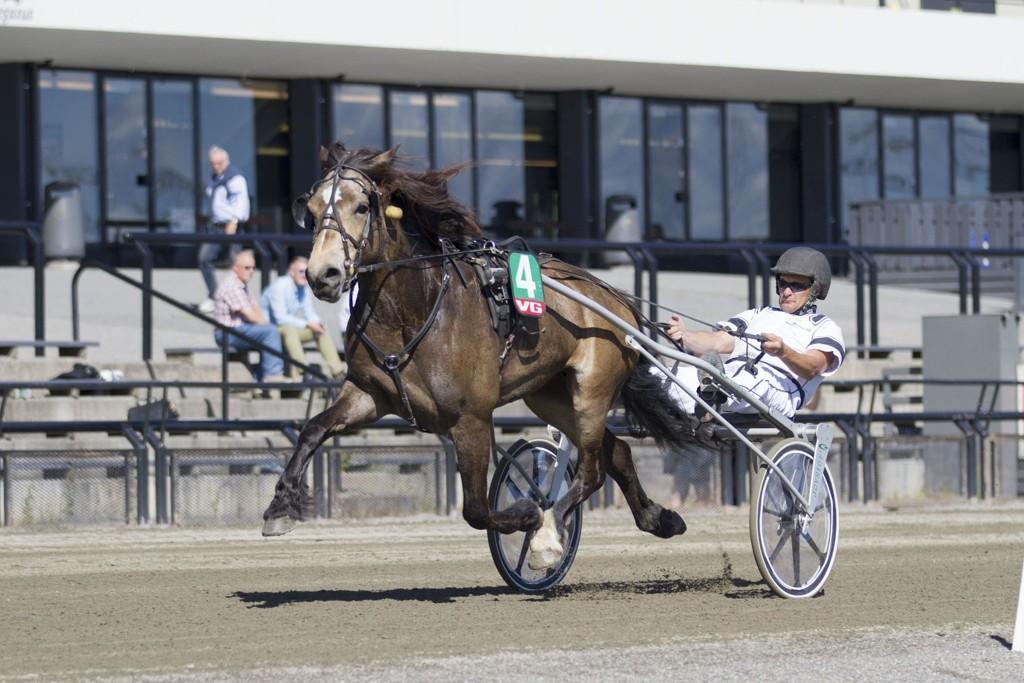 Finnskog Oda, og Henrik Kublik har en interessant oppgave foran seg i dagens V4-omgang. hesteguiden.com