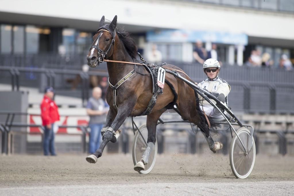 Magnus Jakobsson kjører et par av våre luringer i dagens jackpotomgang. foto_Roger Svalsr¿d_hesteguiden.com