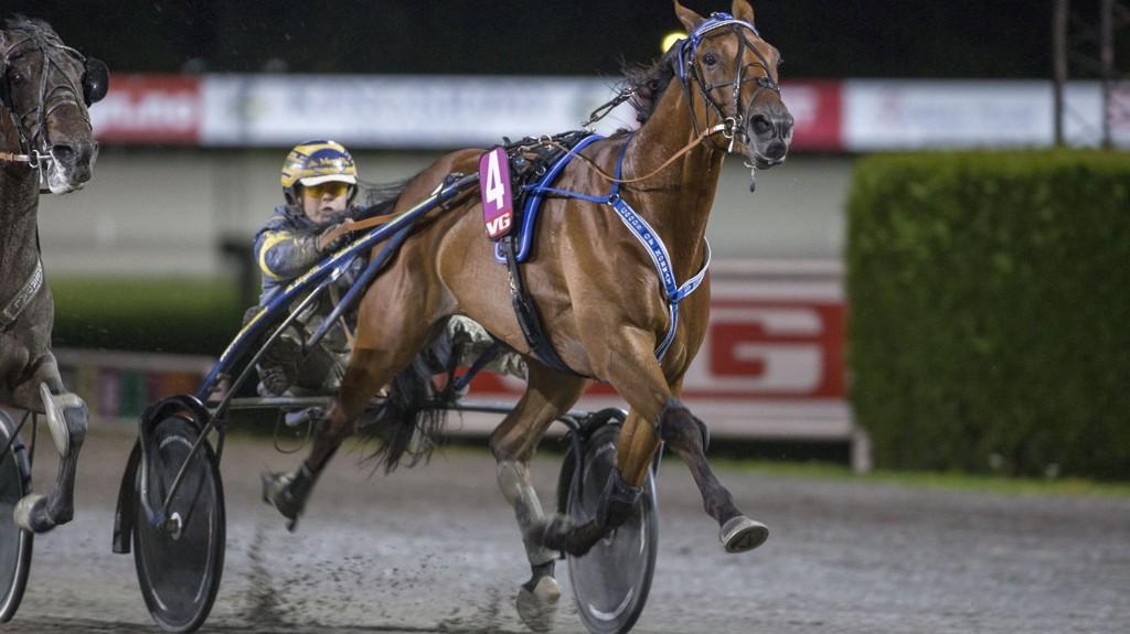 Good's Of Norway og Kristian Malmin har en flott vinnersjanse i V76-6 på Bjerke onsdag. Foto Roger Svalsrød hesteguiden.com