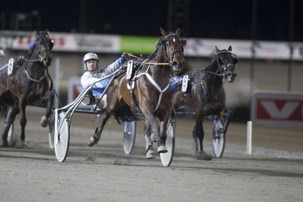 Carl Johan Jepson kjører en av våre luringer på torsdag. foto_Roger Svalsr¿d_hesteguiden.com