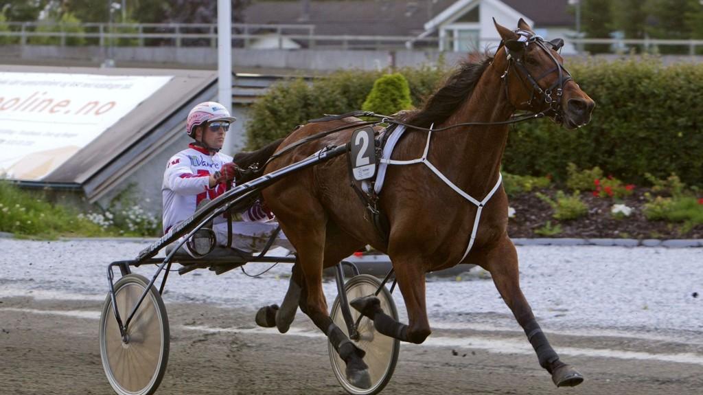 Baritron og Thomas Mjøen blir store favoritter i V5-2 på Leangen lørdag. Foto Morten Skifjeld/Hesteguiden.com